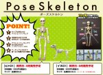 Re-ment Miniatures Pose Skeleton Human + Dog Set